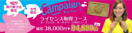 女性キャンペーン