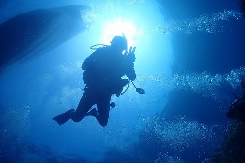 水中の世界観♪